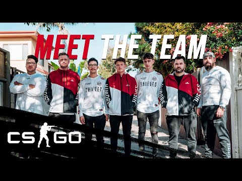 Meet 100 Thieves New Counter-Strike: Global Offensive Team