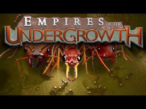 TOUJOURS PLUS DE FOURMIS Empires of the Undergrowth
