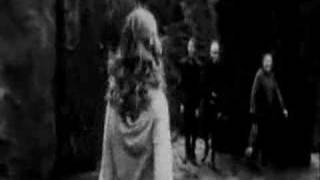 Dramione - Forever yours