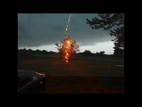 Lightning hits tree right in front of me while filming a storm