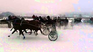 Cutter Race - Jackson Hole, WY - February 2011