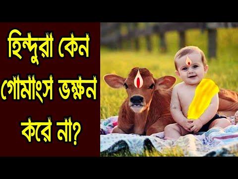 হিন্দুরা কেন গরুর মাংস খায় না? গোহত্যা ও গোচর্মের ব্যাবহার কি পাপ? Why Hindus Do Not Eat Beef