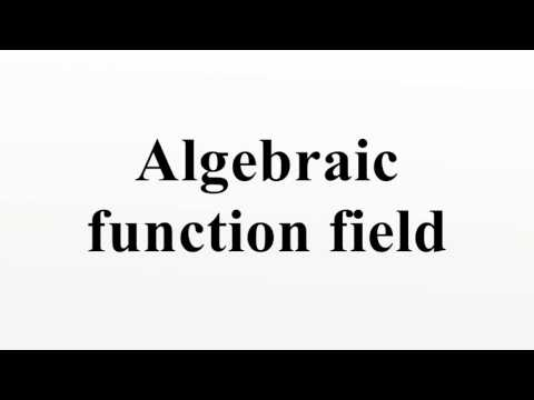 Algebraic function field