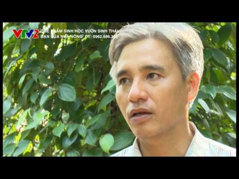 VTV2-Bạn của nhà nông: Ứng dụng cho Hồ Tiêu, Cây Ăn Quả, Chăn nuôi (T12.2015)