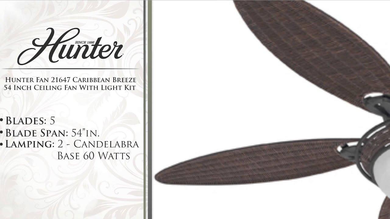 Hunter Fan 21647 Caribbean Breeze 54 Inch Ceiling Fan With ...