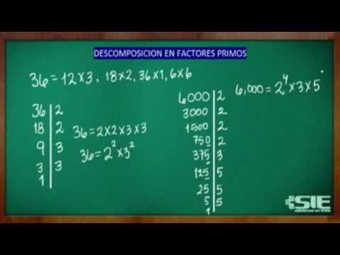 a2a7da13f Descomposición En Factores Primos - YouTube