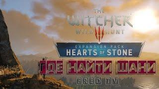 Где найти Шани после прохождения игры(Дополнения)? The Witcher 3 (Дополнение Каменные сердца)