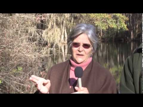 Price, Rose   On History and Uniqeness of Edisto River