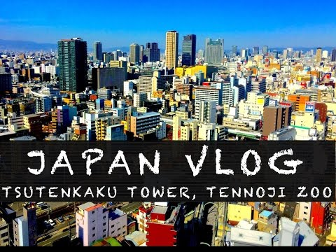 Japan VLOG - Tsutenkaku Tower a Tennoji ZOO