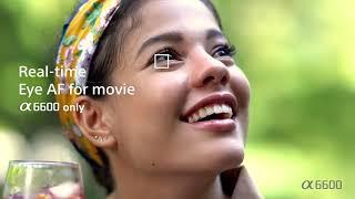 Sony α α6600 α6400 α6100 l Optimal movie autofocus // Tedinson Visual