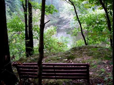 A Fall Walking Tour of Woodhaven - by Len Nasman