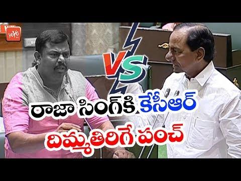 CM KCR VS Raja Singh In Telangana Assembly | BJP VS TRS | Telangana News | YOYO TV Channel
