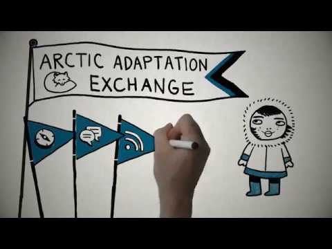 What is the Arctic Adaptation Exchange?