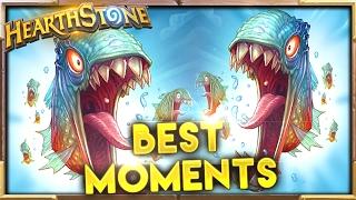 Best Moments 84   Hearthstone Gadgetzan