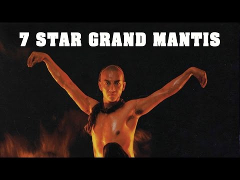 Random Movie Pick - Wu Tang Collection - 7 Star Grand Mantis YouTube Trailer