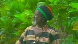 Play Reggae Physician