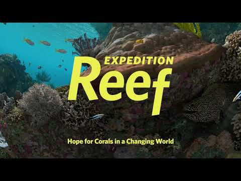 Expedition Reef (Trailer)   California Academy of Sciences