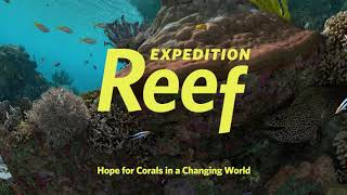 Expedition Reef (Trailer) | California Academy of Sciences