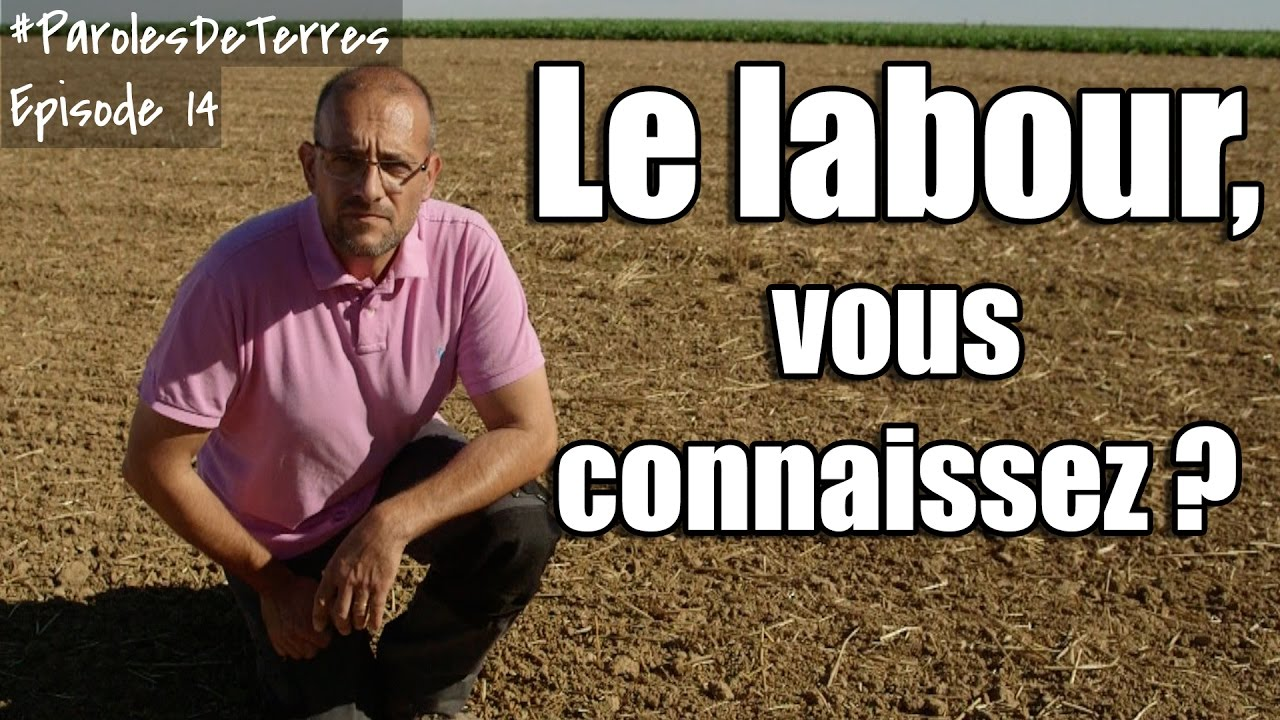 La préparation du sol, labour, sans labour, semis direct