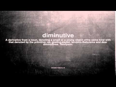 What does diminutive mean