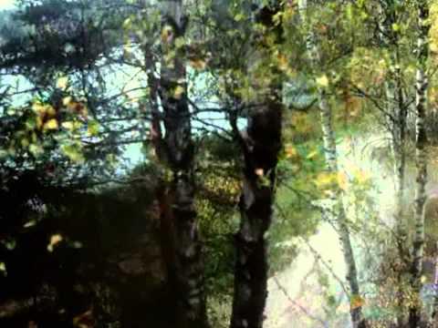Марина Цветаева - О, черная гора, затмившая весь свет!
