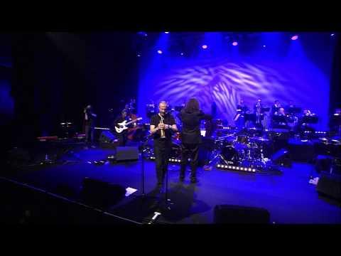 Simon Fache Big Backing Band live à l'Aéronef INTEGRAL