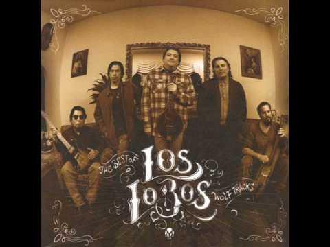LOS LOBOS -  EVANGELINE