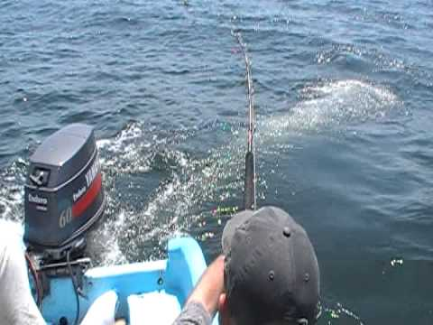 Huatulco Fishing Mexico 2013