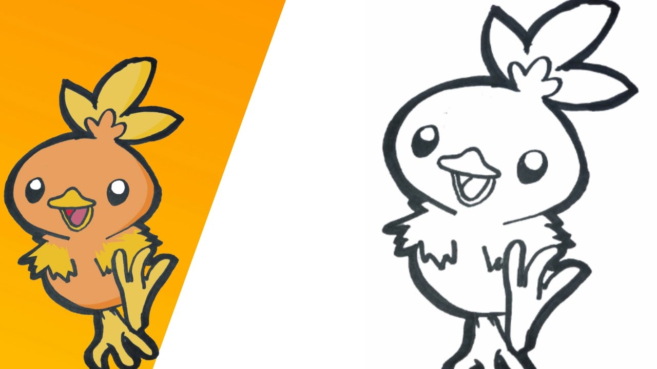 Como dibujar a Torchic paso a paso  how to drawstep by step  YouTube