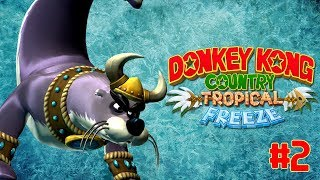 angery seal   donkey kong country  tropical freeze  2