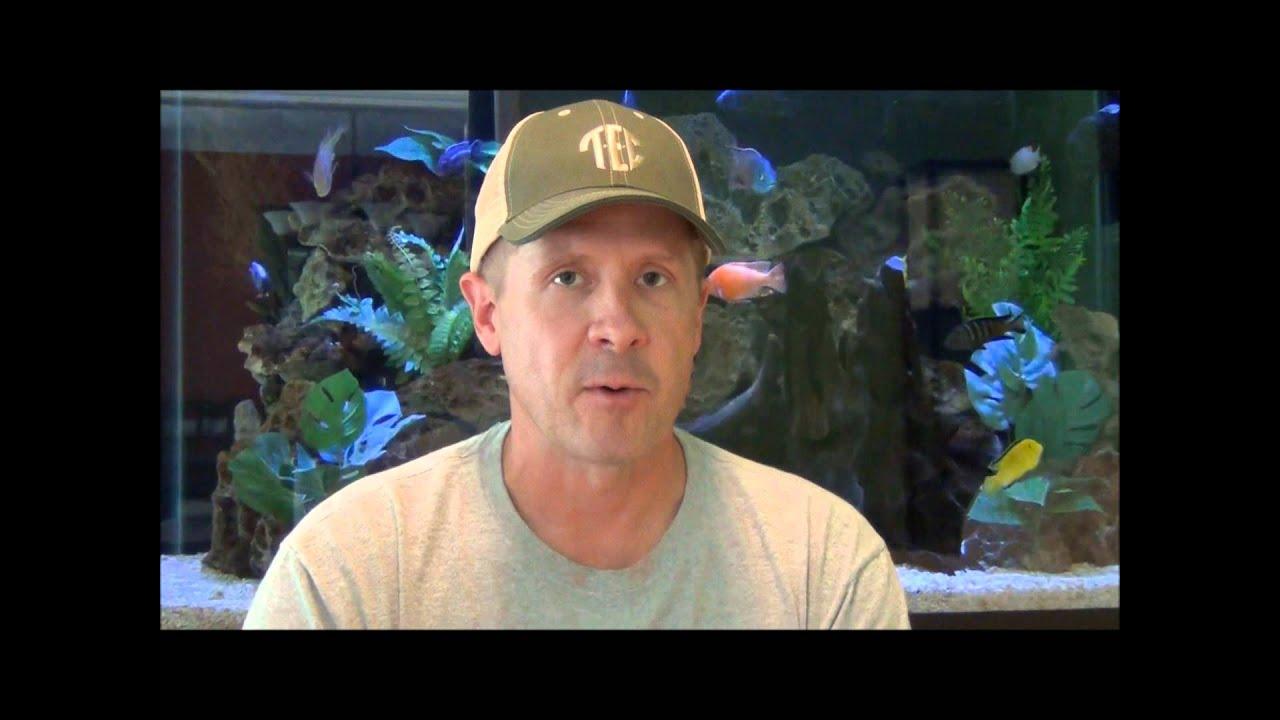 Nitrates In The Aquarium Part Four Youtube