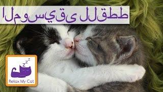 الموسيقى للقطط - الموسيقى والاسترخاء للمساعدة القطط النوم