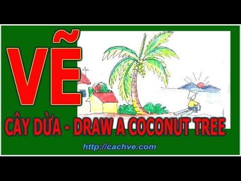 Học vẽ cây dừa – How to draw a coconut Tree
