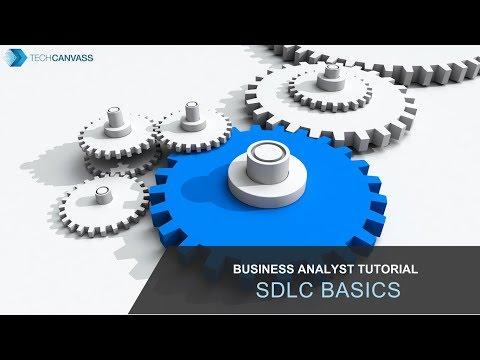 Business Analyst Tutorial   SDLC Basics