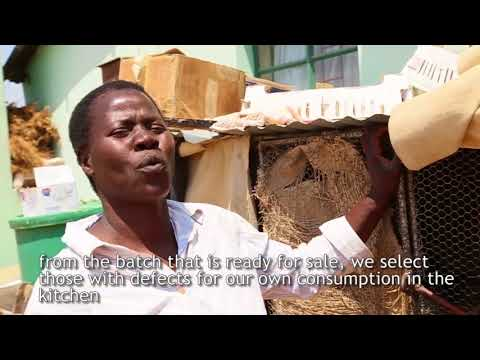 Achieving Gender Equality by economicaly empowering rural women in Zimbabwe