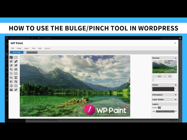 How to use the Bulge/Pinch Tool in WordPress using the WP Paint