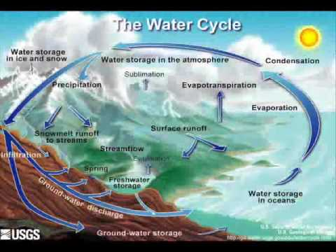 water essay for bio ch wmv  water essay for bio ch wmv