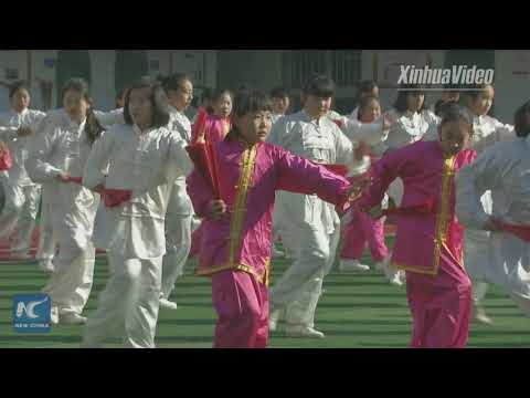 Tai Chi Kungfu fan a new exercise in China's high school
