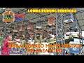 Metro Jaya Cup  Lomba Burung Berkicau Kaltara Murai Borneo Masih Menjadi Kelas Favorit  Mp3 - Mp4 Download