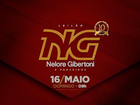 Lote 10   Uruguaiana FIV Giber   GIBE 1592 Copy
