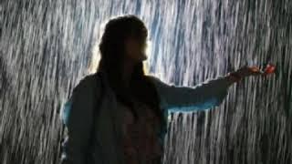 Gambar cover Status WA Keren | November Rain