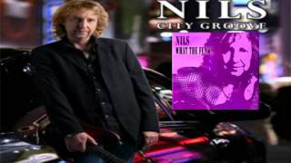 NiIs - Shake It 2010 (What The Funk ?)