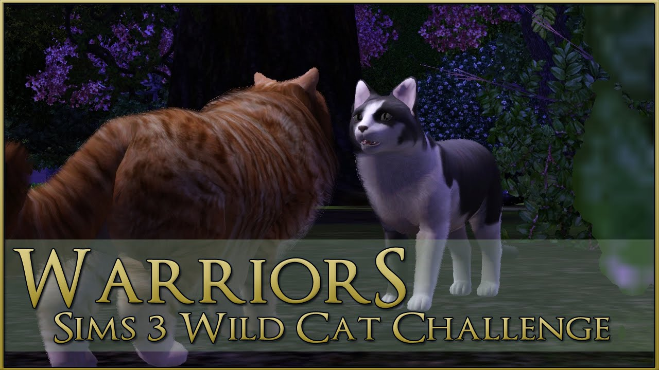 How To Make A Fox Sims  Cats And Dogs