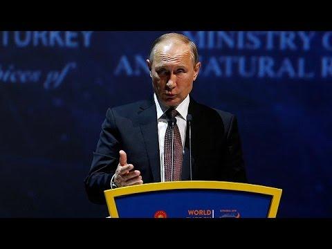 Putin afirma que Rusia está dipuesto a congelar o reducir su producción de petróleo - economy