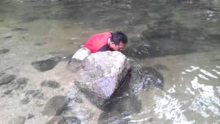 Tll lan lubuk tangkap ikan sungai guna tangan