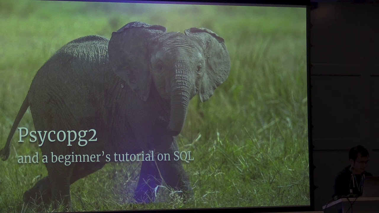 Image from PyCon Ireland 2019 - Wrapping All Your Databases - Yiu Ming Huynh