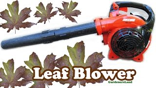 Echo Leaf Blower Best Cordless Gas Lawn Leaves Blowers - Blowing Fall Foliage No Rake Raking Jazevox