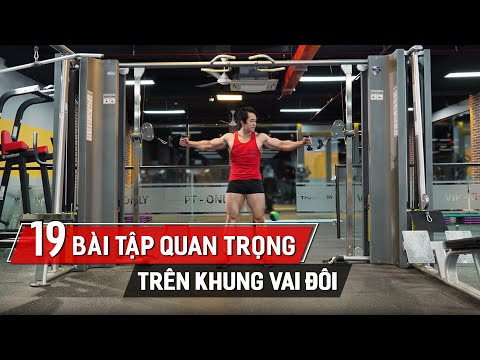 19 Động Tác Gym Nhập Môn Trên Khung Cable Crossover Ai Cũng Phải Biết