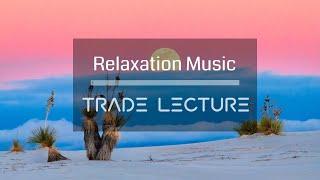 꽃과 함께 듣는 음악 [N°009] - 편안하게 듣는 음악 카페음악 Study Music 피아노연주 연속듣기