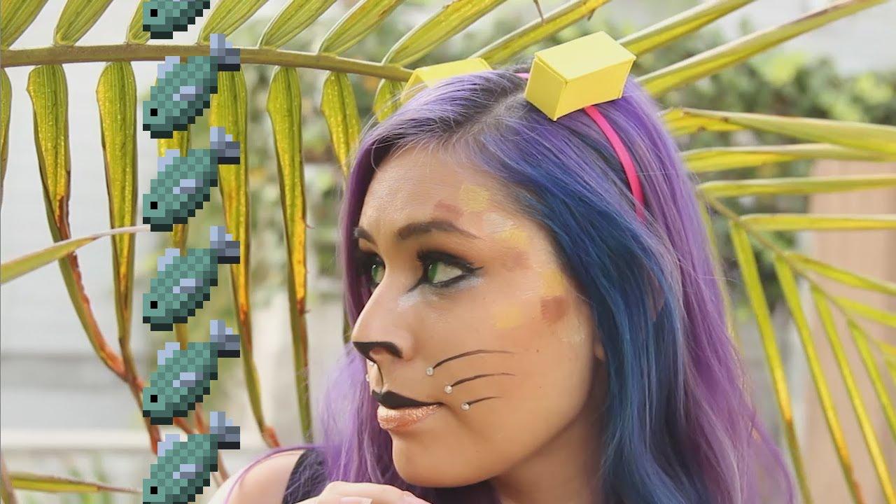 Cake The Cat Costume Diy